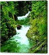 Double Falls  Canvas Print