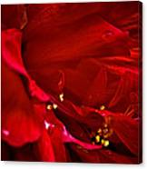 Double Red Canvas Print