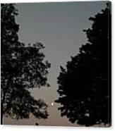 Doughton Park On The Blue Ridge Parkway Canvas Print