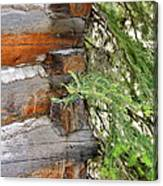 Dovetail Log Construction Canvas Print