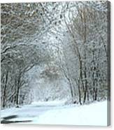 Down A Winter Road Canvas Print