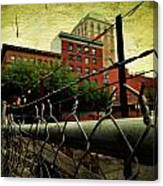 Down The Fence Canvas Print