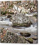 Downstream From Cascade Falls Canvas Print