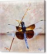 Dragonfly Clinging Canvas Print