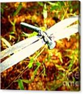 Dragonfly Droid Canvas Print
