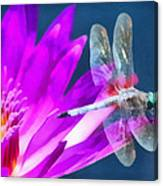Dragonfly Lily Canvas Print