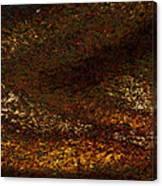 Dragon's Tale Macro1 Canvas Print