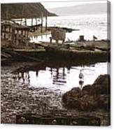 Drakes Bay Oyster Farm Canvas Print