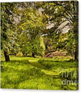 Dreaming Of Ireland Canvas Print