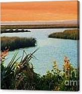Dreamsicle Sunset Canvas Print
