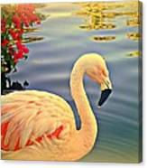 Dreamy Flamingo Canvas Print