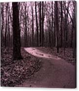 Dreamy Surreal Fantasy Woodlands Nature Path Canvas Print