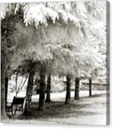 Dreamy Surreal Infrared Park Bench Landscape Canvas Print
