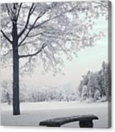 Dreamy White Blue Infrared Michigan Landscape Canvas Print