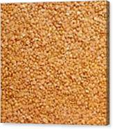 Dried Lentils, A Type Of Pulse Canvas Print