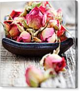 Dried Rose Buds Canvas Print
