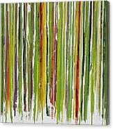 D.s. Color Band Canvas Print