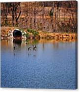 Ducks Flying Over Pond I Canvas Print