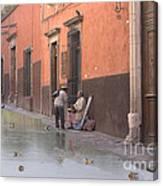 Ducks Swimming On Calle Reloje Canvas Print