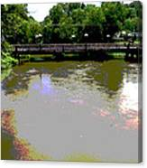 Ducktown Polarized River  Canvas Print