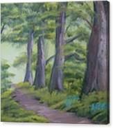 Duff House Path Canvas Print