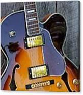 Duncan Guitar Canvas Print