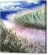 Dune Path Canvas Print