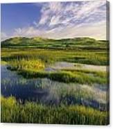 Dune Pond, Brackley, Prince Edward Canvas Print