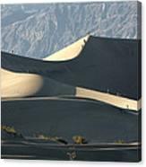 Dune Walkers Canvas Print