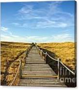 Dune Walkway Canvas Print
