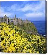Dunluce Castle, Co. Antrim, Ireland Canvas Print