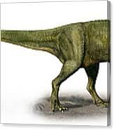 Duriavenator Hesperis, A Prehistoric Canvas Print