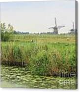 Dutch Landscape With Windmills And Cows Canvas Print