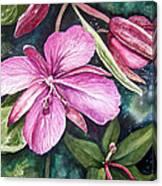Dwarf Fireweed Canvas Print