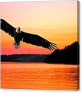 Eagle At Break Of Dawn Canvas Print