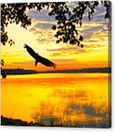 Eagle At Sunset Canvas Print