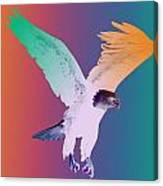 Eagle Five Canvas Print