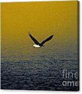 Eagle Haze Canvas Print