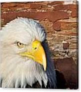 Eagle On Brick Canvas Print