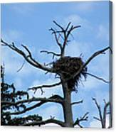 Eagles Nest Canvas Print