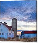 Early Morning On The Farm Canvas Print