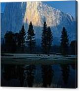 Early Morning View Of El Capitan Canvas Print