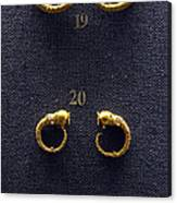Earrings Canvas Print