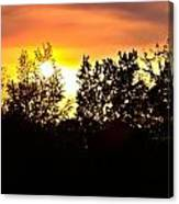 East Texas Sunset Canvas Print