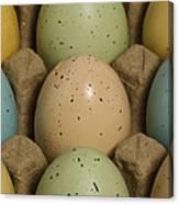 Easter Eggs Carton 1 A Canvas Print
