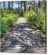 Easy Path Canvas Print
