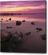 Edge Of A New Day Canvas Print
