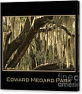 Edward Medard Park Canvas Print
