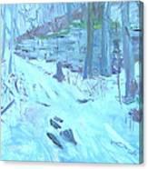 Eel Bay Trail Canvas Print