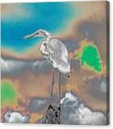 Egrit Canvas Print